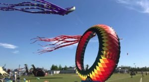 This Incredible Kite Festival In Louisiana Is A Must-See