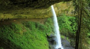If There Are Only 5 Hikes You Ever Do In Oregon, Make Them These