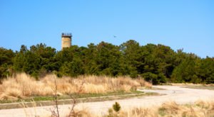 This Short Hike Will Take You To The Best View In Delaware