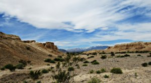 Visit This Amazing Fossil Park In Nevada That's Full Of Prehistoric Treasures