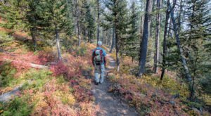 The One Incredible Trail That Spans The Entire State of Idaho