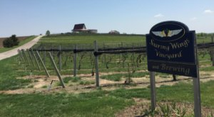 This One-Of-A-Kind Nebraska Winery Is Located In The Most Unforgettable Setting