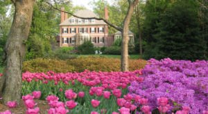 The 10 Very Best Places To Go In Maryland This Spring