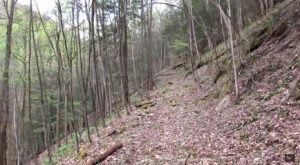 This Creepy Spot Deep In The Woods Of West Virginia Is Like Something Out Of A Horror Movie