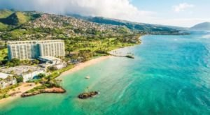 Watch Dolphins Play From Your Window At This Beautiful Seaside Hotel In Hawaii