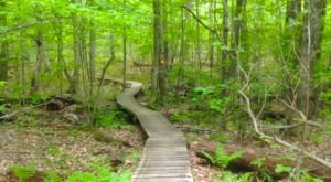 The One Incredible Trail That Spans The Entire State of Massachusetts