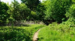 This Quaint Little Trail Is The Shortest And Sweetest Hike In Massachusetts