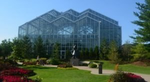 You'll Want To Plan A Day Trip To Michigan's Magical Butterfly House