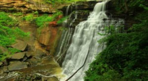 10 Easy And Beautiful Spring Hikes Everyone In Cleveland Will Love