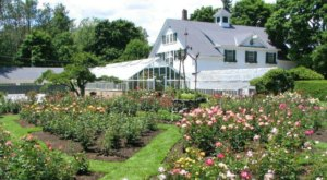 Most People Don't Realize These 6 Secret Gardens Around New Hampshire Exist