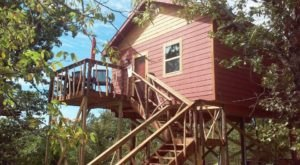 You'll Never Forget Your Stay In These Amazing Treehouse Cabins In Oklahoma