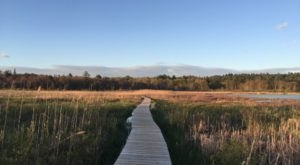 8 Stunning Boardwalks In Connecticut You Won't Find At The Beach