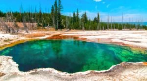 Why You Should Visit America's Enchanting Emerald Pool As Soon As Possible