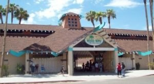 Most People Don't Know This Arizona Zoo And Adventure Park Even Exists