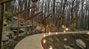 A Treehouse Restaurant In Pennsylvania, Tree Tops Is Full Of Whimsical Beauty