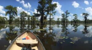 7 Gorgeous Hidden Lakes In Louisiana You'll Want To Visit Time And Time Again