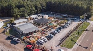 A Trip To This Gigantic Indoor Farmers Market in Mississippi Will Make Your Weekend Complete
