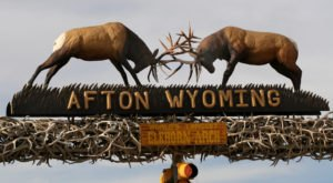 The Best Roadside Attraction In Wyoming Is Hiding In This Tiny Town
