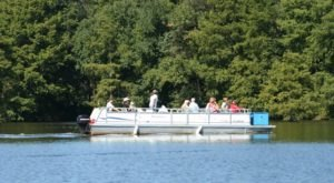 Take This Pontoon Boat Tour To Experience The Best Of This Delaware State Park
