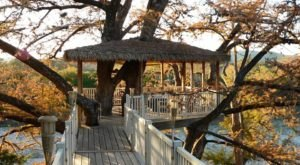 A Night At This Whimsical Treehouse Near Austin Will Make Your Childhood Dreams Come True
