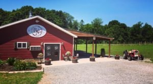 This Little Known Winery In West Virginia Is Hiding Some Of The Region's Best Wine