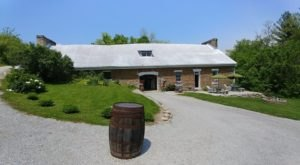 The Oldest Winery In America Is Right Here In Kentucky And It's A Must-Visit