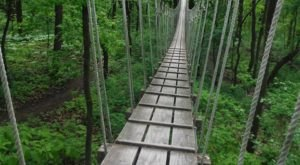 This Canopy Walk Near Milwaukee Will Make Your Stomach Drop
