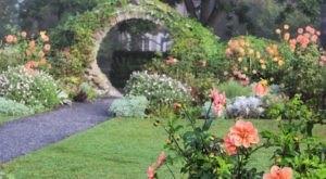 The Secret Garden Hike In Rhode Island Will Make You Feel Like You're In A Fairytale