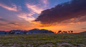 This Unbelievable Colorado Park Looks Like A Painting Come To Life