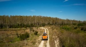This Awesome Tour Will Show You A Side Of Florida You've Never Seen Before