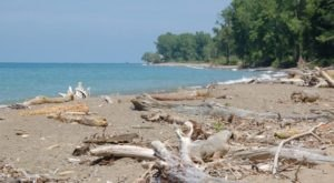 The Mentor Lagoons Nature Preserve Near Cleveland Will Bring Out The Explorer In You