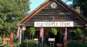 8 Stores That Anyone Who Grew Up In Georgia Will Undoubtedly Remember