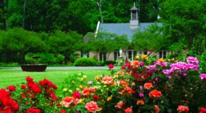 The 7 Most Colorful, Whimsical Gardens In Louisiana To Lose Yourself In