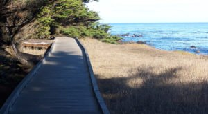 This Beautiful Boardwalk Trail In Northern California Is The Most Unique Hike Around