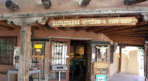 There's A Rattlesnake Museum In New Mexico And It Looks As Amazing As It Sounds
