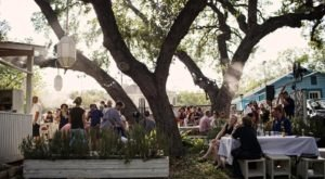 You'll Never Want To Leave This Beautiful Backyard Wine Garden In Austin