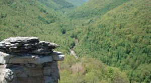 West Virginia Has A Grand Canyon, Blackwater Canyon And It's Incredibly Beautiful