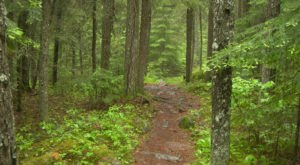 The Trail In Minnesota That Will Lead You On An Adventure Like No Other
