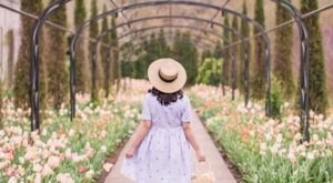 The Blooming Flower Walk In Nashville That Will Positively Enchant You