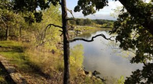 The Ancient Forest In Kansas That's Right Out Of A Storybook