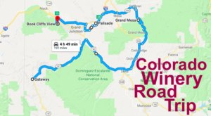 See The Very Best Of Colorado Wine Country In One Day On This Epic Road Trip