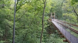 The Treetop Trail That Will Show You A Side Of Ohio You've Never Seen Before