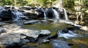 The Hike Through This West Virginia Nature Preserve Is Simply Unforgettable