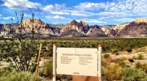 7 Easy And Beautiful Spring Hikes Everyone In Nevada Will Love