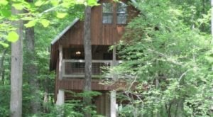This Treehouse Resort In Oklahoma May Just Be Your New Favorite Destination