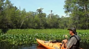 This One Of A Kind Water Tour In South Carolina Will Bring Out The Explorer In You