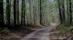 Driving Down This Haunted Alabama Road May Give You Nightmares