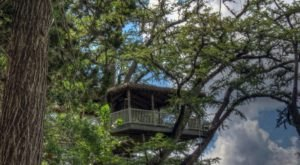 This Treehouse Resort In Texas May Just Be Your New Favorite Destination