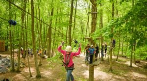 The Treetop Trail That Will Show You A Side Of Connecticut You've Never Seen Before
