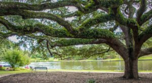 6 Beautifully Scenic Towns In Louisiana To Spend The Day In This Summer
